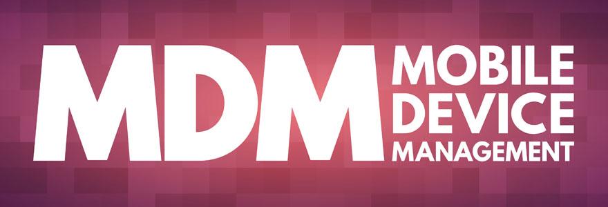 Importance du PIM et du MDM